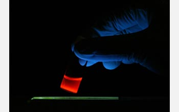 Photo of luminescent porous silicon nanoparticles in a vial illuminated with ultraviolet light.