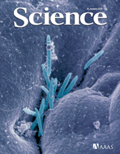 Cover of the Jan. 21, 2011 issue of the journal Science.