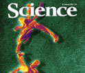 Cover of the January 27, 2012 issue of the journal Science.