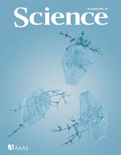 Cover of the January 29, 2010, issue of the journal Science.