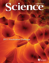 Cover of the February 3, 2012 issue of the journal Science.