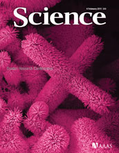 Cover of the February 4, 2011 issue of the journal Science.