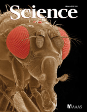 Cover of the March 5, 2010 issue of the journal Science.