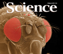 Cover of the March 5, 2010 edition of the journal Science.