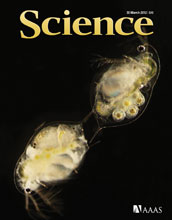 Cover of the March 30, 2012 issue of the journal Science.