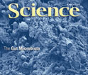 Cover of the June 8, 2012 issue of the journal Science.