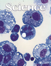 Cover of the June 10, 2011 issue of the journal Science.