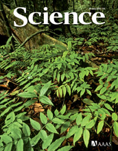 Cover of the July 16, 2010 issue of the journal Science.