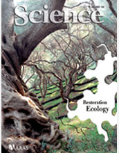 Cover of the July 31, 2009, issue of the journal Science.