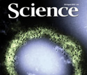 Cover of the August 20 issue of the journal Science.