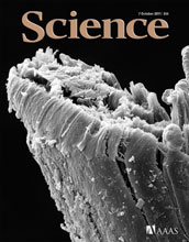 Cover of the October 7, 2011 issue of the journal Science.