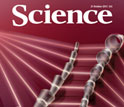Cover of the October 21, 2011 issue of the journal Science.