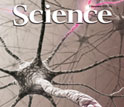 Cover of the November 4, 2011 issue of the journal Science.