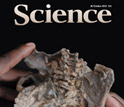 Cover of the journal Science showing two hands holding a bone structure