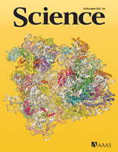 Cover of the December 16, 2011 issue of the journal Science.