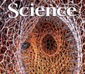 Cover of the Feb. 19 issue of the journal Science featuring Visualization Challenge winners.