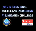 Graphic with text International Science and Engineering Vizualization contest 2012