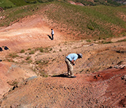 Scientists searching for fossil specimens in Eocene outcrops of northern Turkey.