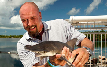 Photo of Shark Defense researcher Patrick Rice with a bonnethead shark.