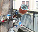 Image of a snake robot wrapped around tree with words The Search Serpent: The Next Wave in Robotics.