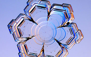 Image of a snowflake with the the plate-like form.