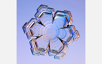 variation of stellar plate snow crystal