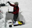 Photo of CSAS Director Chris Landry measuring snow water equivalence in a snowpit.