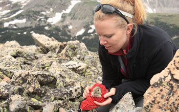 Girl holding a pika in the mountains