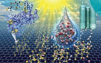 Enzymatic synthesis of supported CdS quantum dot/reduced graphene oxide photocatalysts