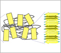 Image showing structure of silk.
