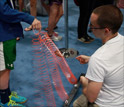 Children interacting with a device at a USA Science and Engineering Festival