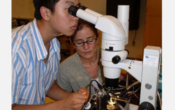 Photo of two undergrads participate in an STC summer research program.