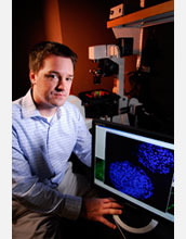 Photo of Todd McDevitt pointing to an aggregate of embryonic stem cells with blue-stained nuclei.