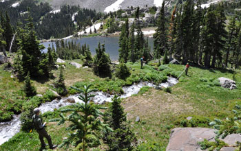 Photo of a creek above Lake Isabella in the Indian Peaks Wilderness in Colorado.