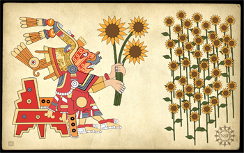 Aztec figure drawn on parchment holding sunflowers; sunflower field in the background.