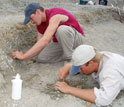 Photo of co-authors Nathan Smith and Sterling Nesbitt digging for fossils at the Ghost Ranch.