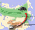 Map of Eurasia showing descent of woolly rhinos in latitude with expansion of cold habitats.