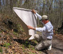 Photo of scientist Graham Hickling checking a drag-cloth for ticks.