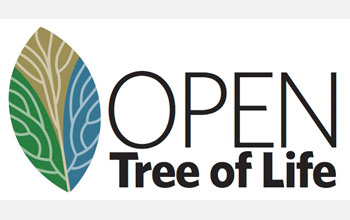 Illustration of a leaf with the words Open Tree of Life.