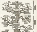 Illustration of the tree of life from the 1879 work The Evolution of Man.