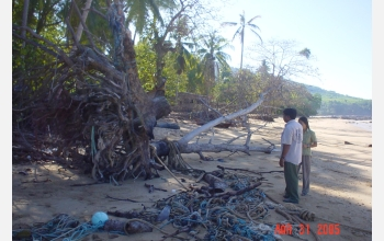 Quarrying sand may have increased losses of coastal houses in Thailand.