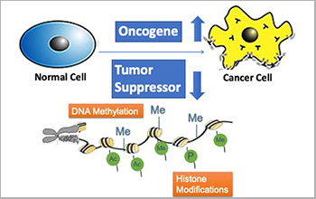 algorithm identifies cancer drivers