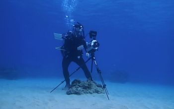 diver underwater with camera tripod