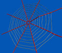 Screenshot of a spider web subjected to mechanical forces.