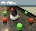 Image of the robot Viguar learning to approach and avoid cylindrical red and green cyclinders.