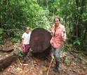 Scientist Crystal McMichael with a helper next to a downed tree