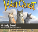 Screen capture of three wolf avators. Text: WolfQuest,Grizzly Bear!,New in Amethyst Mountain Deluxe