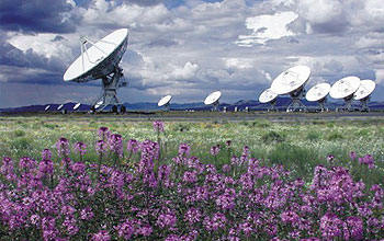 Series of telescopes aimed at sky, purple flowers in foreground.