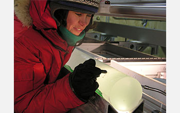 Photo of Rebecca Anderson of the Desert Research Institute examining an ice core section
