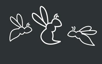 drawing of wasps